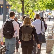 DC Pedestrian Program